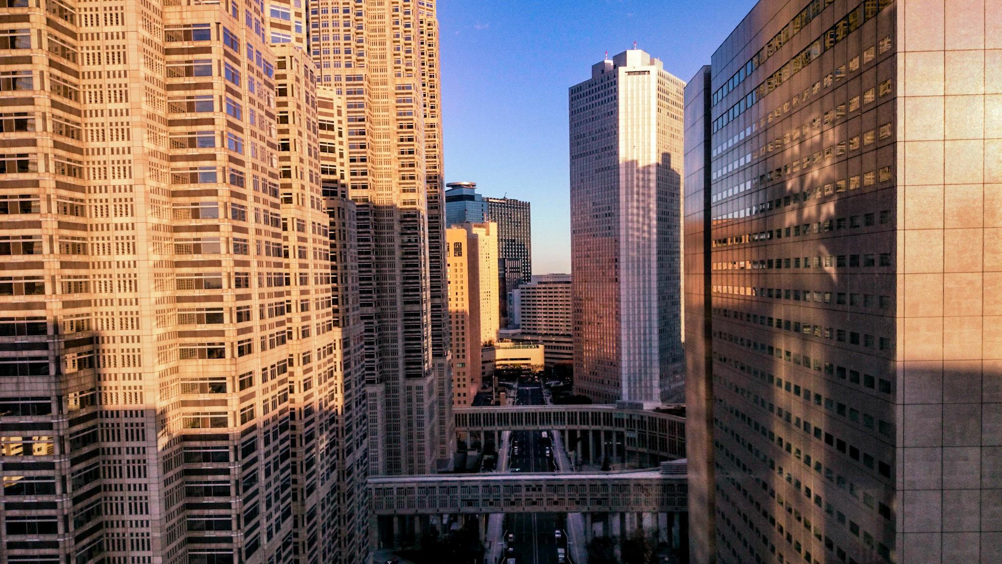 Come muoversi a Tokyo: Shinjuku Skyscrapers View