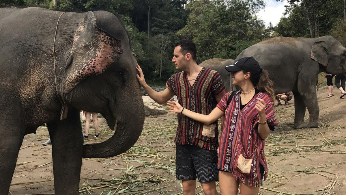 Elefanti Thailandia, come passare una splendida giornata senza maltrattarli