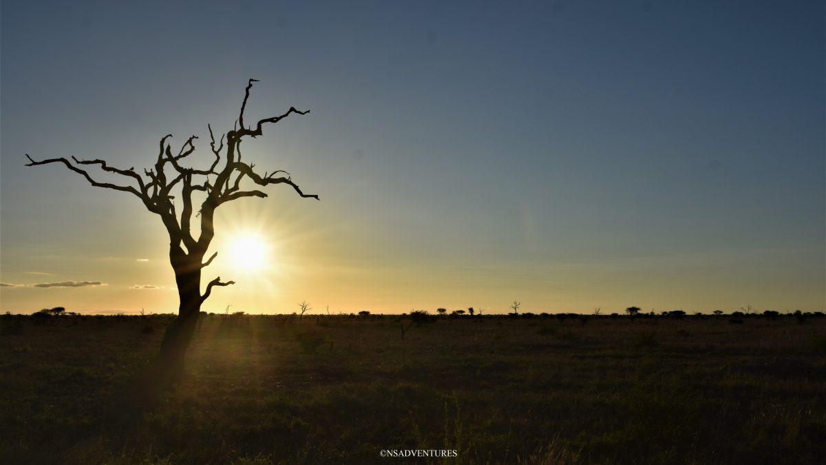 Kruger National Park Sunset