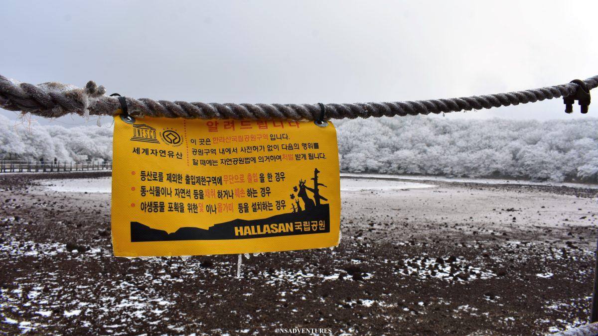 Cosa vedere a Jeju: Halla-san National Park